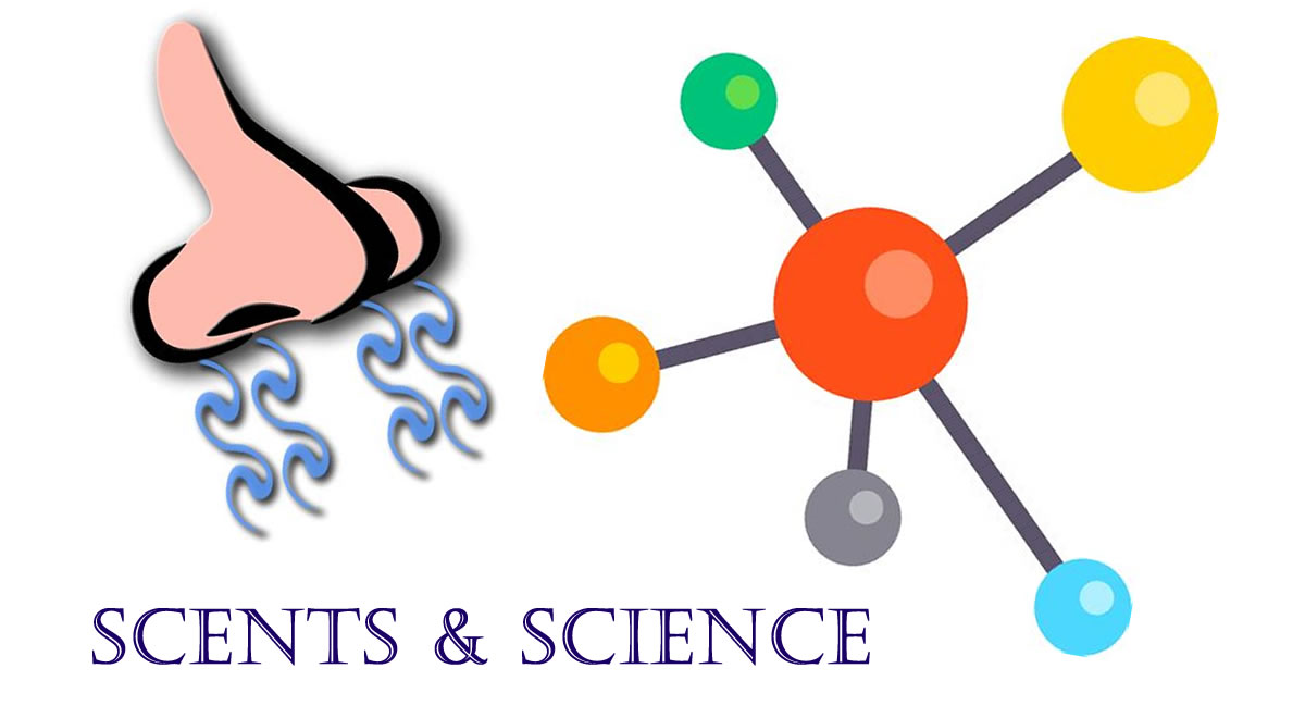 Scents & Science | Jericho Public Library